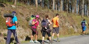 Camino santiago Singles
