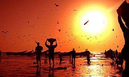 Senegal: costa atlántica y ciudades coloniales