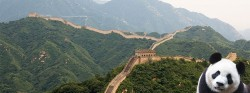 Gran viaje especial singles a China