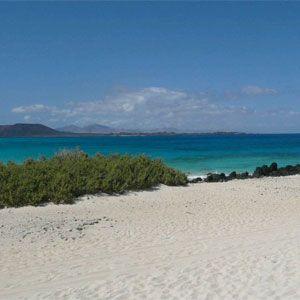 Singles a Fuerteventura