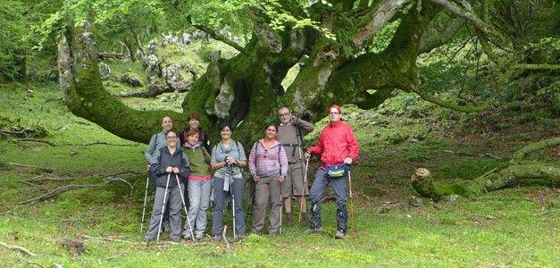 Multiaventura Singles en Asturias