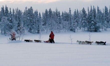 Noruega: Auroras, Trineos y Ballenas