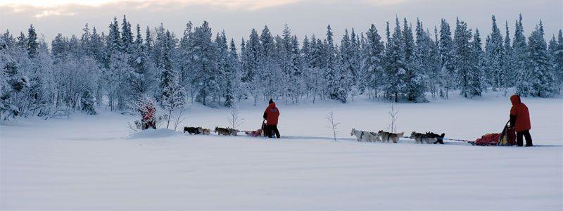 noruega auroras boreales Aventuras / Expediciones