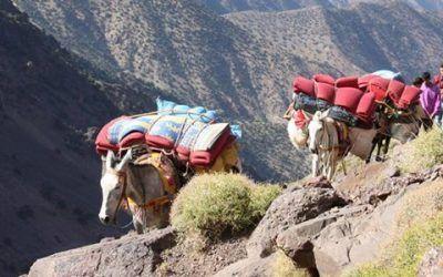 Toukbal Marruecos 400x250 Vacaciones Singles