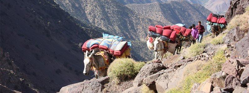Marruecos: a la cima del Gran Átlas