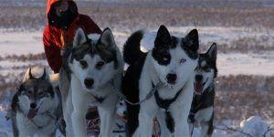 Aventura invernal en Finlandia