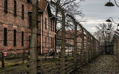 Auschwitz 400x250 Vacaciones Singles