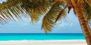 Punta Cana Singles