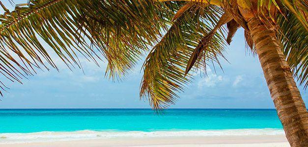 Especial Punta Cana Singles