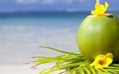 caribe 400x250 Vacaciones Singles