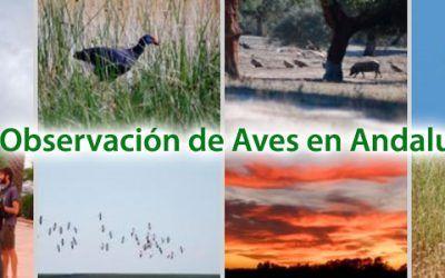Aves en Andalucia 400x250 Vacaciones Singles