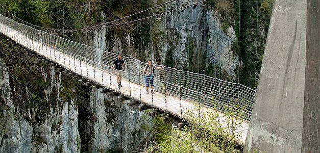 Pirineo Navarro-Francés y Vitoria en Puente de Mayo