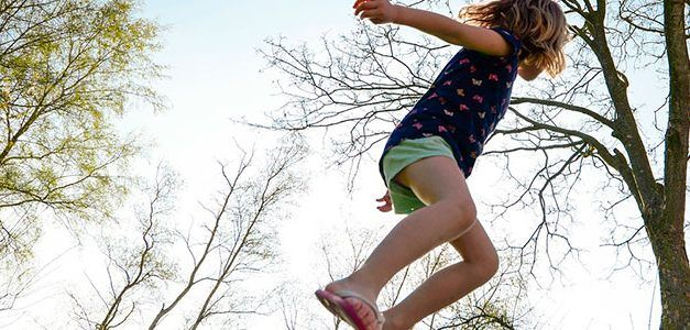 Singles con niños a la Selva de Irati en Semana Santa