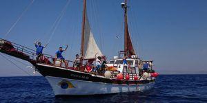 Cetaceos y navegación