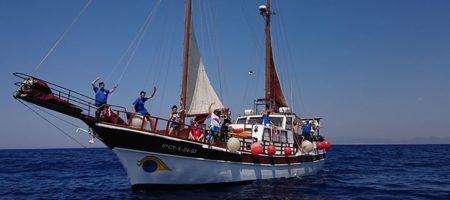 Cetaceos y navegacion 1250x500 1 450x200 Viajes para Singles en España