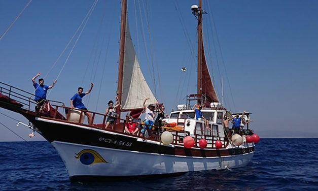 Cetaceos y navegacion 1250x500 1 627x376 Escapadas Singles