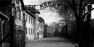Auschwitz Polonia Singles