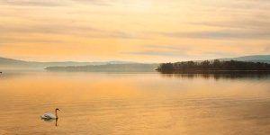 Lago de Constanza Suiza - Alemania