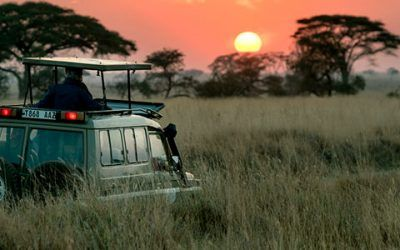 Safari en Kenia 400x250 Vacaciones Singles