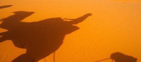 Marruecos Singles Merzouga en Camello 450x200 Viajes Singles en Diciembre