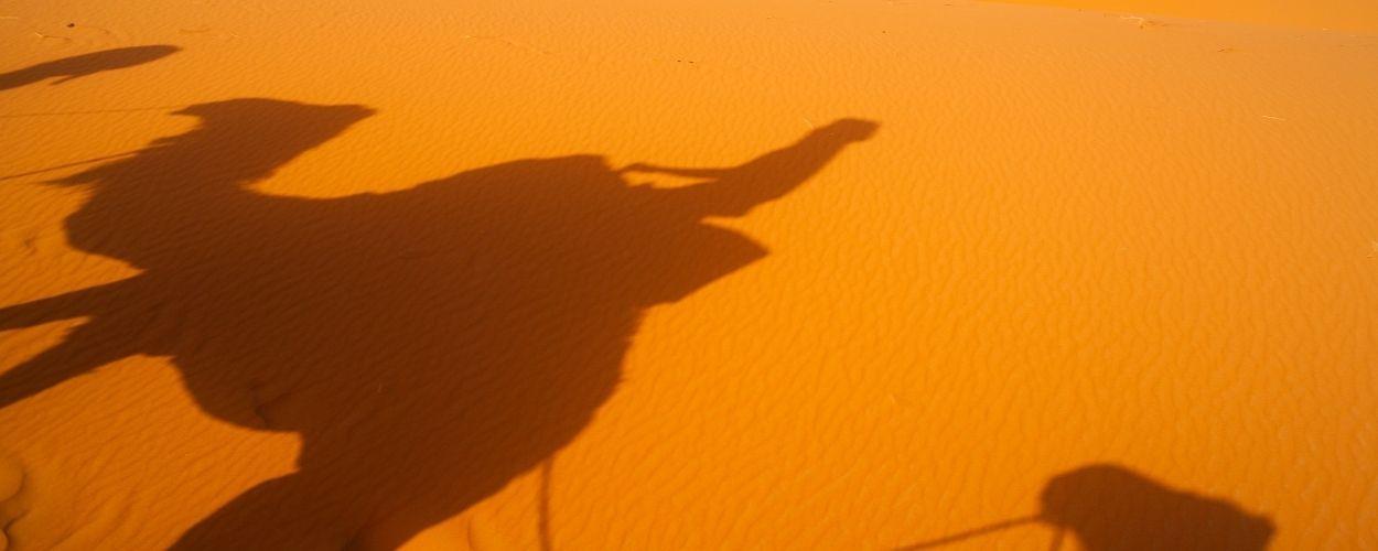 Marruecos Singles Merzouga en Camello